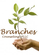 Branches Counseling  Alcohol and Drug Testing, Alcohol and Drug Intervention